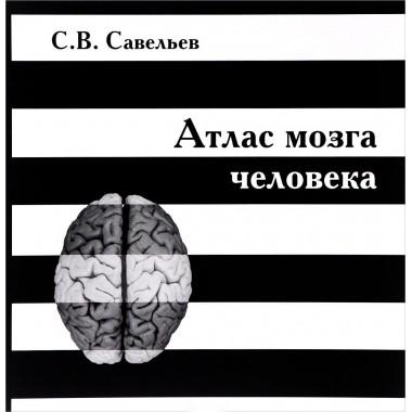 Атлас мозга человека. Савельев Сергей